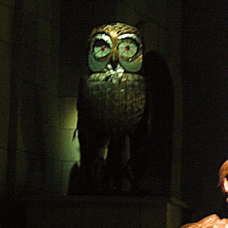 The Owl from Clash of the Titans