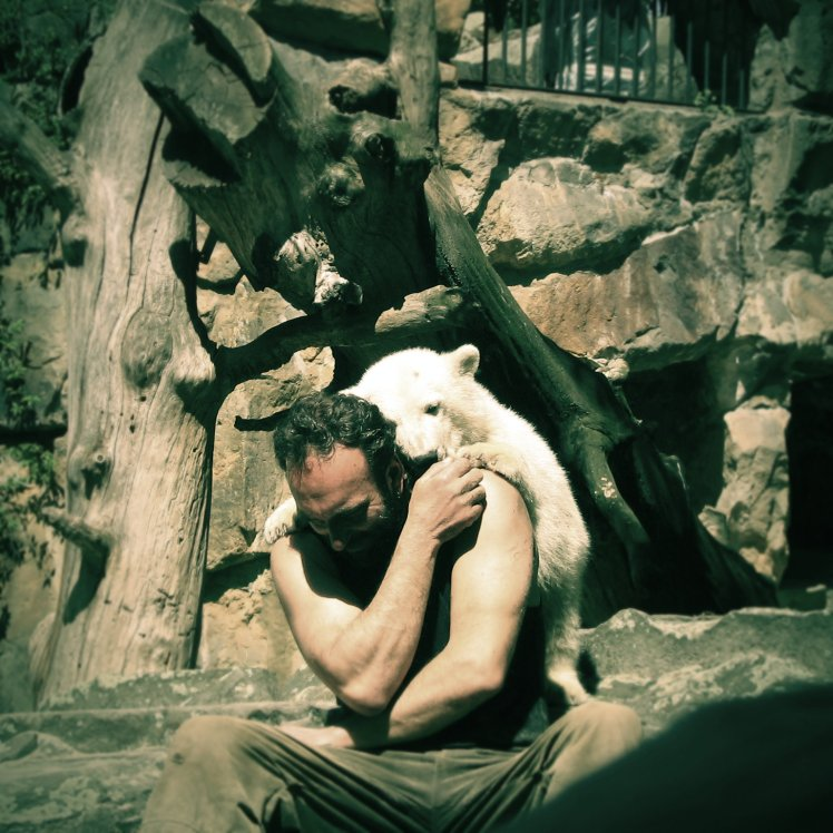 Knut!