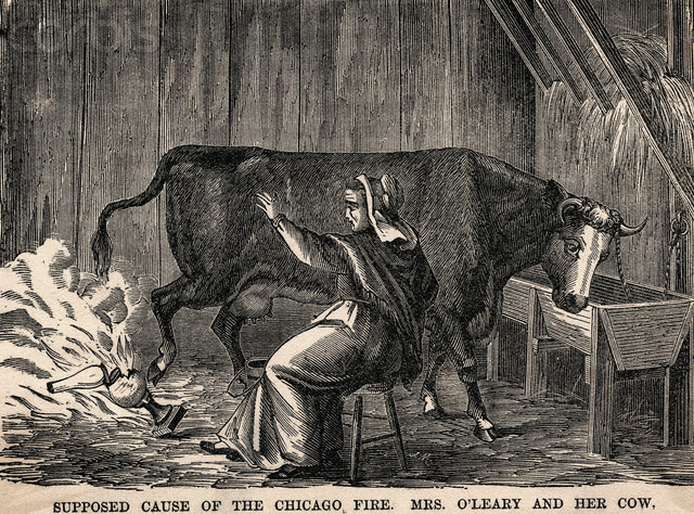 Insert photo illustration from Harpers 1871 depicting Mrs O'Leary with her cow.