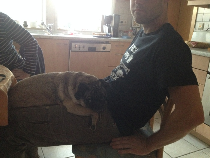 Abner got a bath and was cold....so he decided that he must sit on T's lap