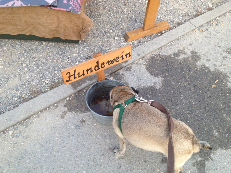 "A bowl of water for dogs.  The sign says: ""Dog Wine."""