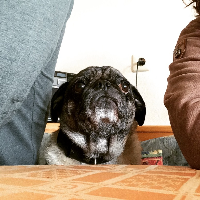 He sits with us at the table