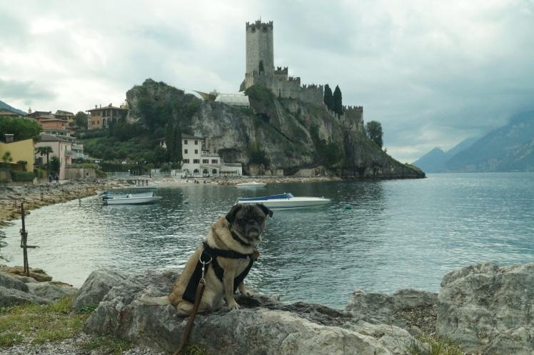 the castle in Malcesine