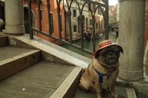 Abner in Venice