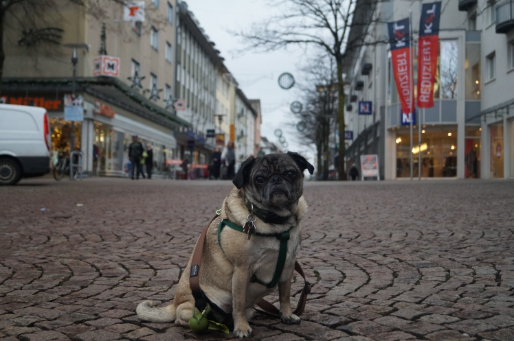 Abner out shopping in Friedrichshafen with his Mami