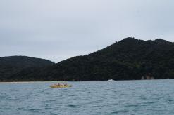 Kayakers!